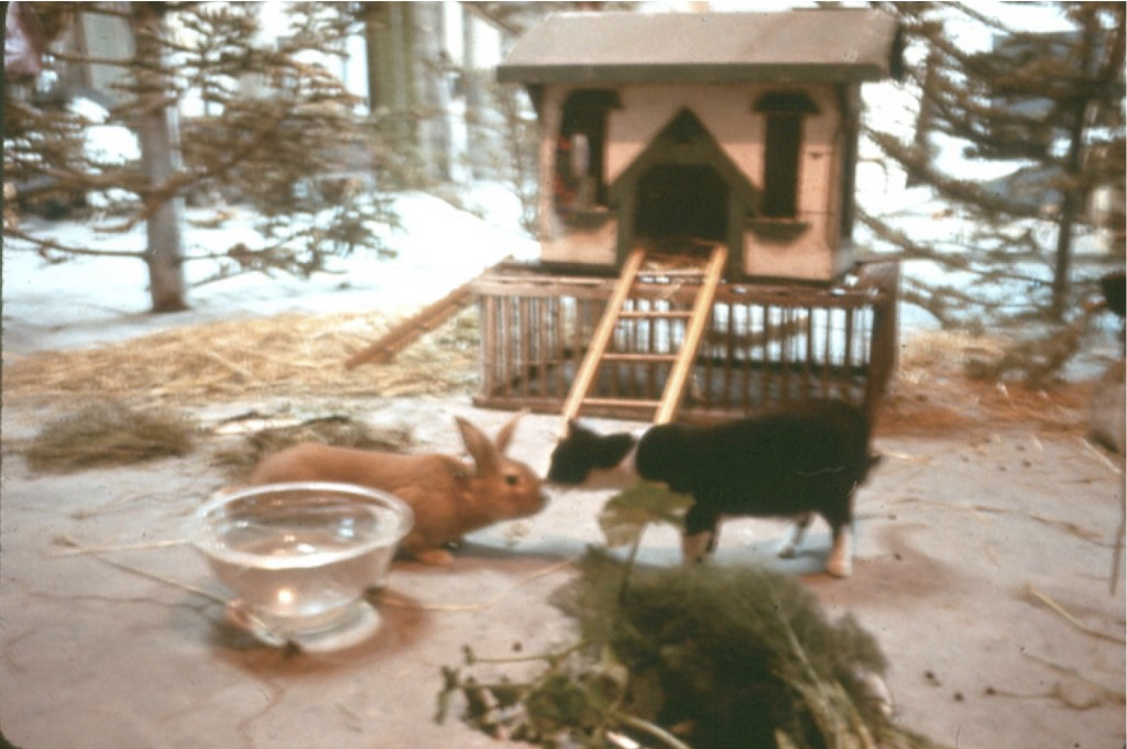 Scene From The Raw Egg Animal Theatre At The Farm: Buck Meets The Cat © 1976 Bonnie Ora Sherk