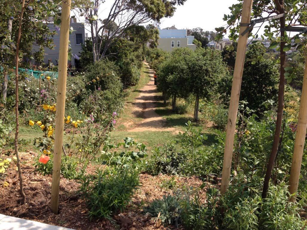 Bernal Heights Living Library & Nature Walk