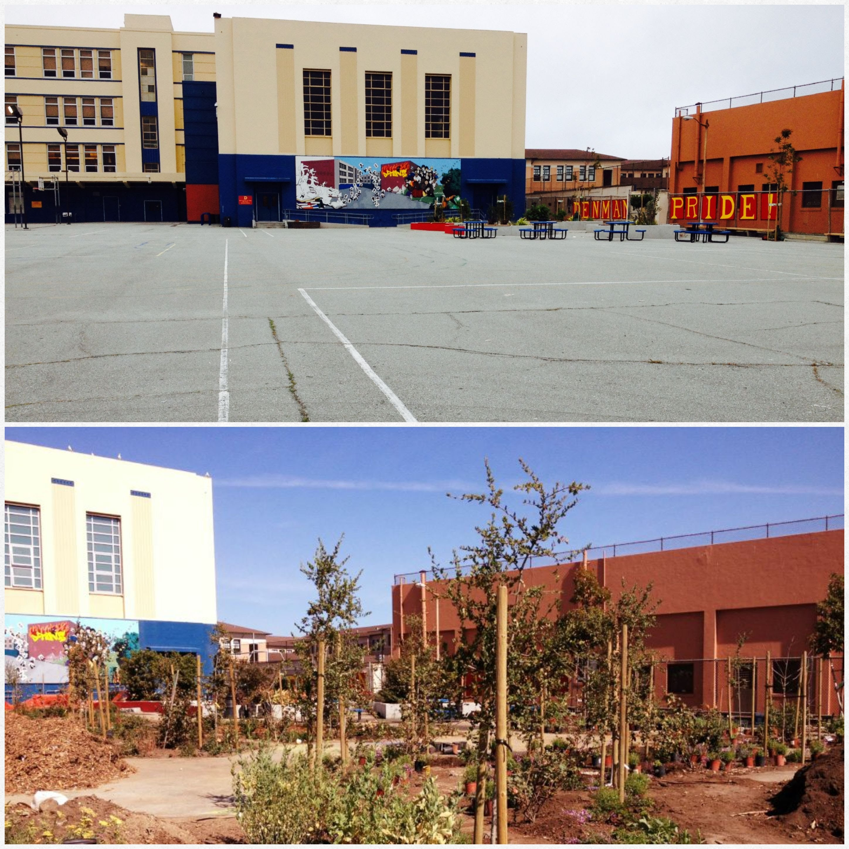 Transformation at Rear Yard of James Denman Middle School